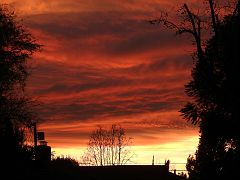 Sherman Oaks Sunset