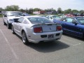 Roush Mustangs  0004