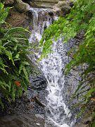 Descano Gardens16