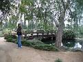 Sharon at Woodley Park Japanese Garden