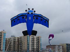 AIrplane kite, 7 feet