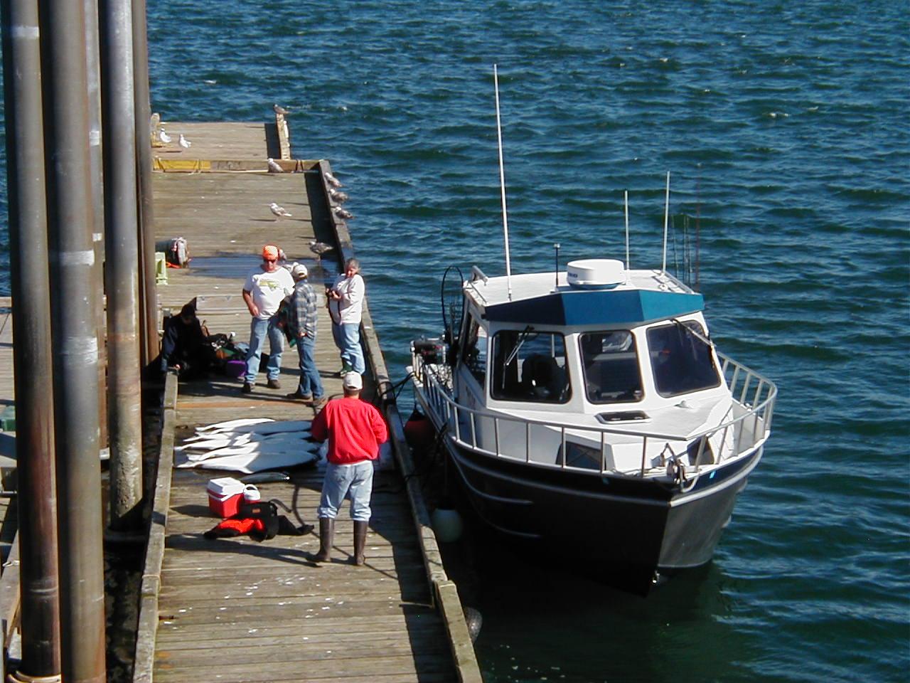 Gustavus dock, charter boat