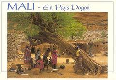 Mali - Pays Dogon Family PE