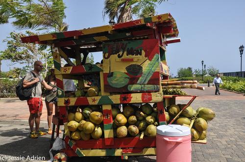 Francois 60th Birthday Cruise jamaica -20