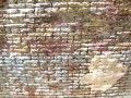 Wall Texture 3
