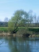 An der Weser