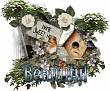 Beautiful - 2939