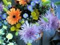 Flowers, Byward marketFlowers, Byward market