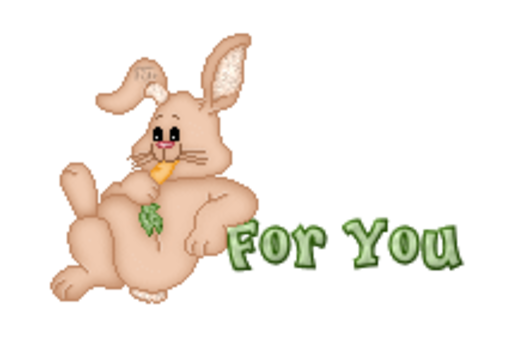 For You - BunnyWithCarrot