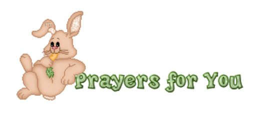 Prayers for You - BunnyWithCarrot