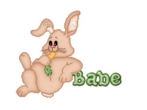Babe - BunnyWithCarrot