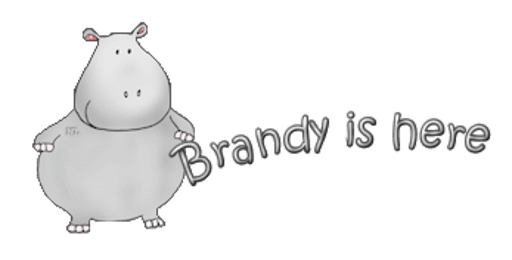 Brandy is here - CuteHippo2018