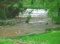 Storm Damage Molong Creek 012