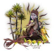 Les 14 Shakina's World