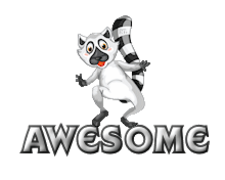 Awesome - RaccoonStepOnName