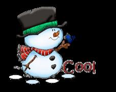 Cool - Snowman&Bird