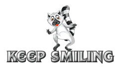 Keep Smiling - RaccoonStepOnName