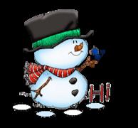 Hi - Snowman&Bird