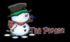 Tag Please - Snowman&Bird