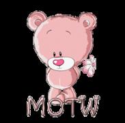 MOTW - ShyTeddy