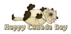 Happy Canada Day - KittySitUps