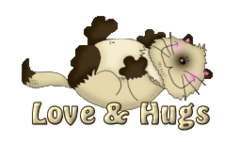 Love & Hugs - KittySitUps