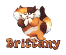 Brittany - GigglingKitten
