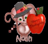 Noah - ThanksgivingMouse