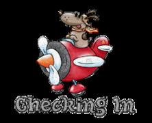 Checking In - DogFlyingPlane