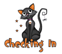 Checking In - HalloweenKittySitting