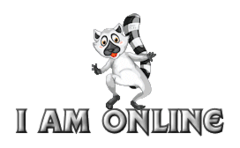 I am online - RaccoonStepOnName