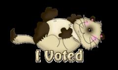 I Voted - KittySitUps