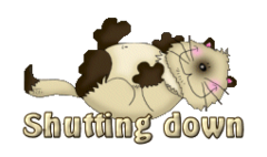 Shutting down - KittySitUps