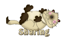 Sharing - KittySitUps