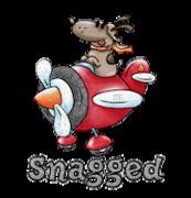 Snagged - DogFlyingPlane