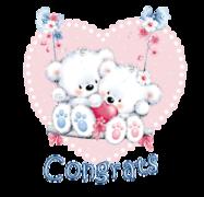 Congrats - ValentineBearsCouple2016