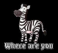 Where are you - DancingZebra