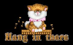Hang in there - CuteKittenSitting
