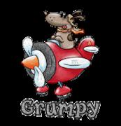 Grumpy - DogFlyingPlane