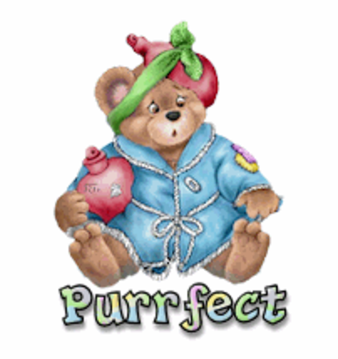 Purrfect - BearGetWellSoon