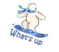 What's up - SnowboardingPolarBear