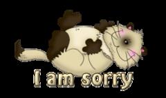 I am sorry - KittySitUps