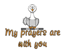 My prayers are with you - OstrichWithBlinkie