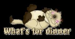 What's for dinner - KittySitUps