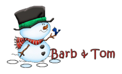 Barb & Tom - Snowman&Bird