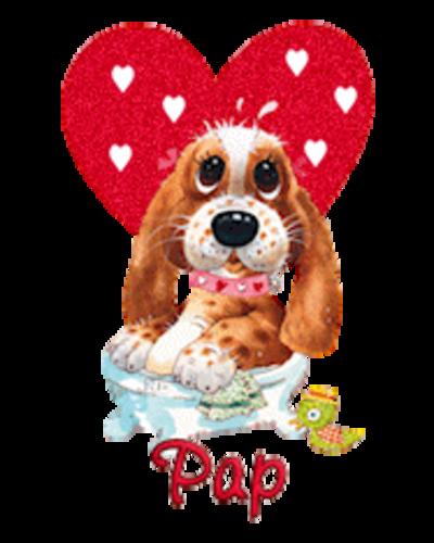 Pap - ValentinePup2016