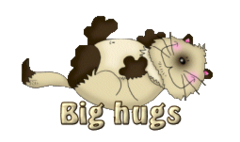Big hugs - KittySitUps