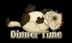 Dinner Time - KittySitUps