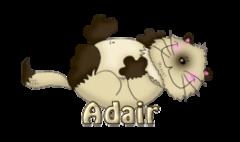 Adair - KittySitUps