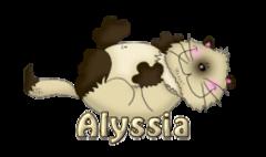 Alyssia - KittySitUps